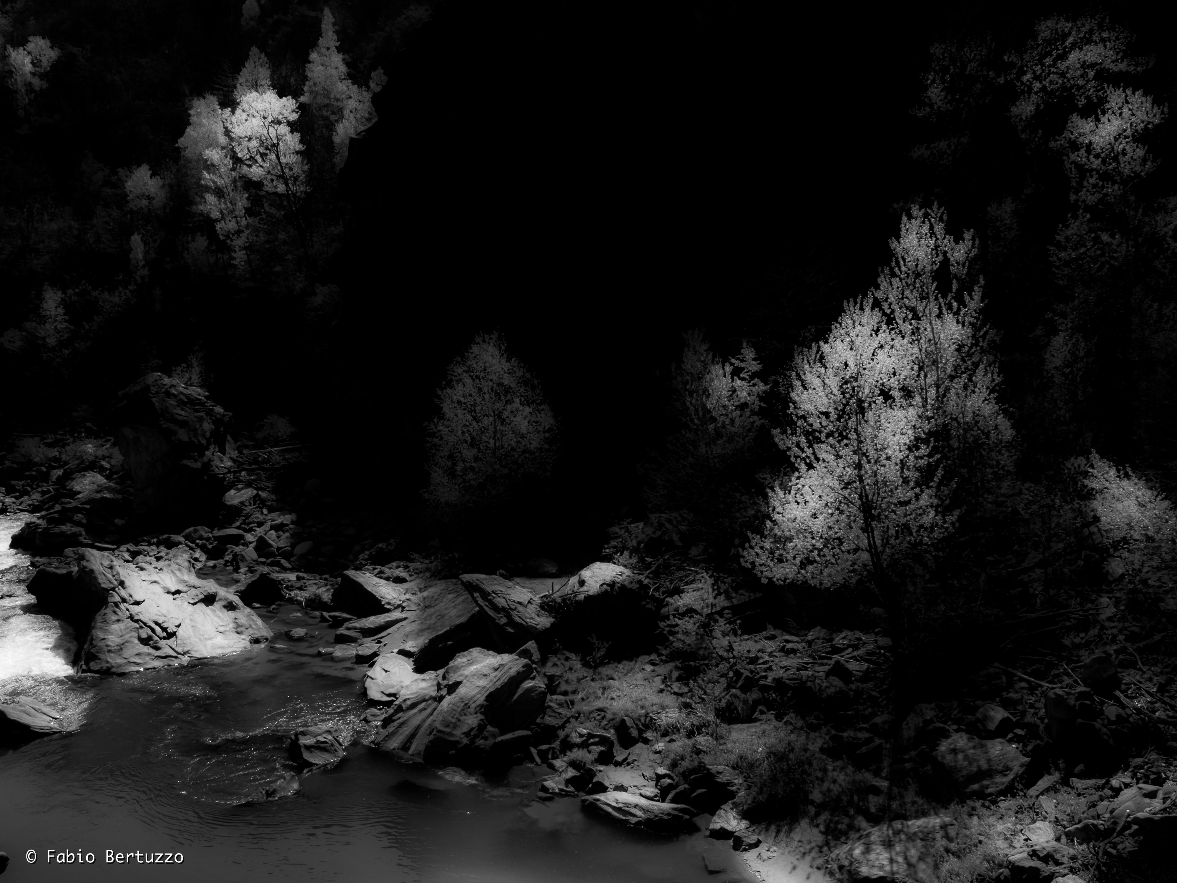 A riva © Fabio Bertuzzo