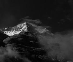 © Fabio Bertuzzo