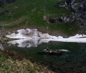 Lago Cortese