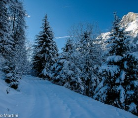 Vorrei un inverno così...