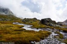 Tundra valdostana